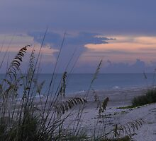 refuge {Sanibel Skyscape No. 11} by WonderlandGlass