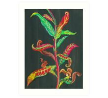 Fireweed Leaves in Autumn Art Print