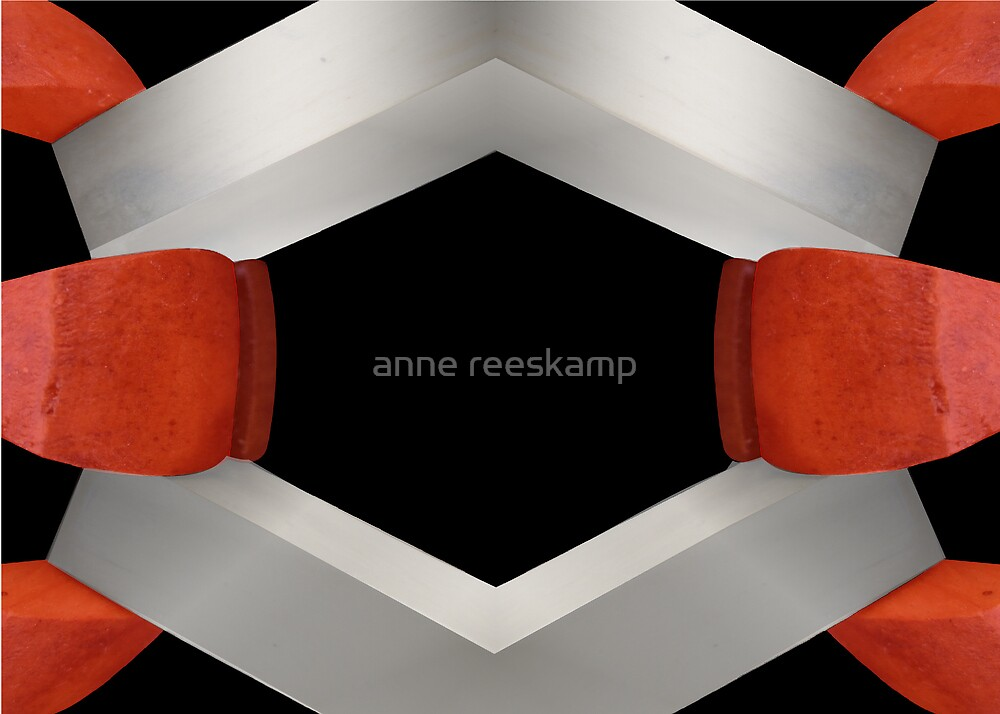 a firm stand  by anne reeskamp