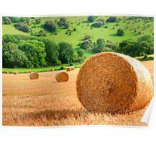 Harvest - West Sussex Poster