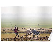 Ethiopian Fields Poster