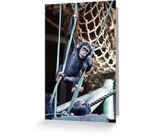 King of the Swingers Greeting Card