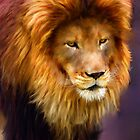 African Lion portrait by Michael Greenaway