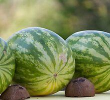 watermelon in summer by spetenfia
