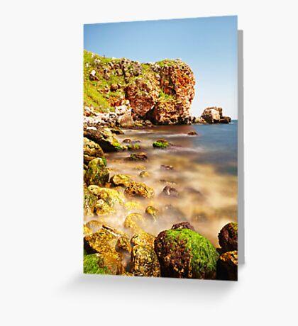 shore beauty Greeting Card