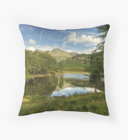 The View From The Bench  Throw Pillow
