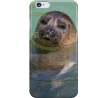 sea lion at the zoo iPhone Case/Skin