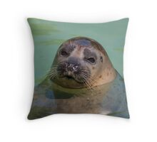 sea ​​lion at the zoo Throw Pillow