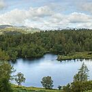 Tarn Hows In August.....(A Panorama) by Jamie  Green