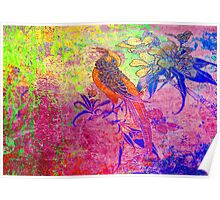 Happy Bird.Colours. Poster