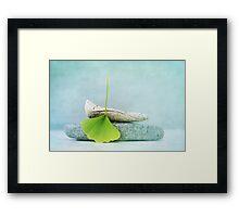 driftwood, stone and a gingko leaf Framed Print