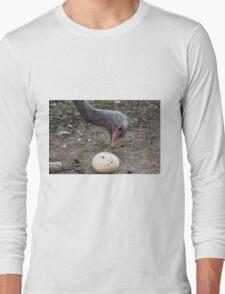 ostrich in the farm Long Sleeve T-Shirt