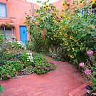 Taos Door and Garden by Mitchell Tillison