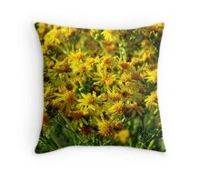 Wild Sunshine (Common Ragwort, Senecioneae Jacobaea) Throw Pillow