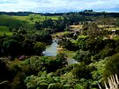 Waitangi River and the green green land of home.....! by Roy  Massicks