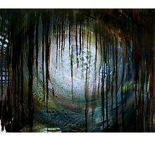 The Chaos Theory Photographic Print