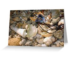 Hammerhead Oyster Four Greeting Card