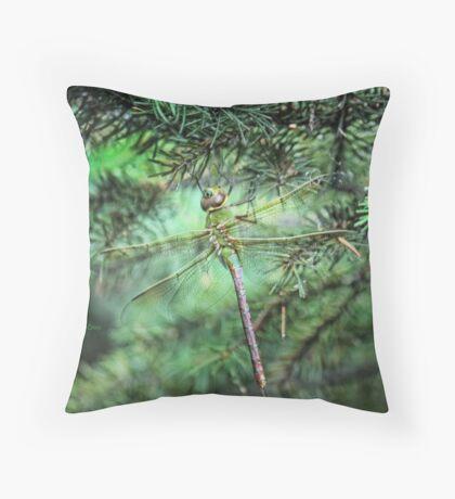 Where Dragonflies Sleep Throw Pillow