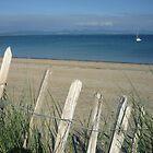 Fence posts at Glân y môr beach, Pwllheli, North wales  by Anna Myerscough