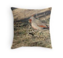 Pyrrhuloxia ~ Male Throw Pillow