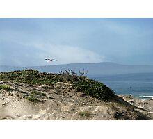 Beach Serenity Photographic Print