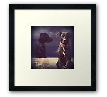 """Don't Chase the Goats, Self..."" 900 views Framed Print"