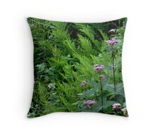 Ferns and Joe Pye Weed at Aguasabon Falls - Terrace Bay Ontario Throw Pillow