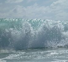 the wave by netts