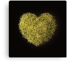 Vegetarian Love Canvas Print