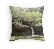Irrawong Reserve, Narrabeen, Sydney Throw Pillow