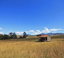Cabin in a field by Tim Harper