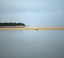 sandbar. anderson inlet, inverloch by tim buckley | bodhiimages