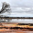 Salt Lake - Western Australia by Bev Woodman