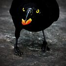 ~Nevermore~ by a~m .