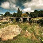 Clappers Bridge, Dartmoor by Adam  Barstow