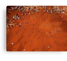 pindan dirt Canvas Print
