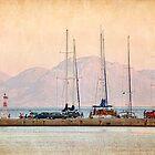 twilight harbour by Teresa Pople