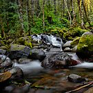 A Place To Rest by Charles & Patricia   Harkins ~ Picture Oregon