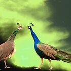 Heavenly Creatures by Alayna de Graaf Photography