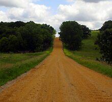A Long Road Ahead by Jeffrey J. Miller