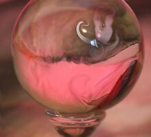 Crystal Ball by Alayna de Graaf Photography