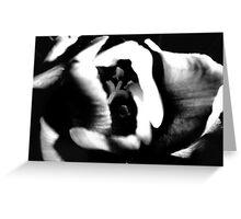 BW Tulip #8 Greeting Card