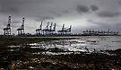 Cranes At Felixstowe Docks by Darren Burroughs