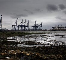 Cranes At Felixstowe Docks by Darren Burroughs