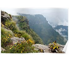 Simien Mists Poster