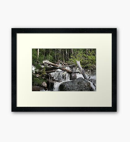 Sticks Within The Falls Framed Print