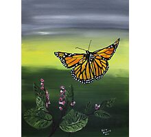 Monarch Landing Photographic Print