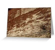 Fly on the wall (fence actually) Greeting Card