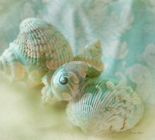 Seaside Lace by Carolyn Staut