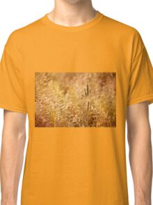 Golden cereal plant photo Classic T-Shirt